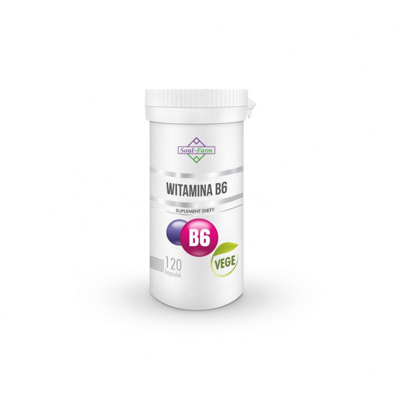VITAMIN B6 (18 mg)  120 CAPSULES