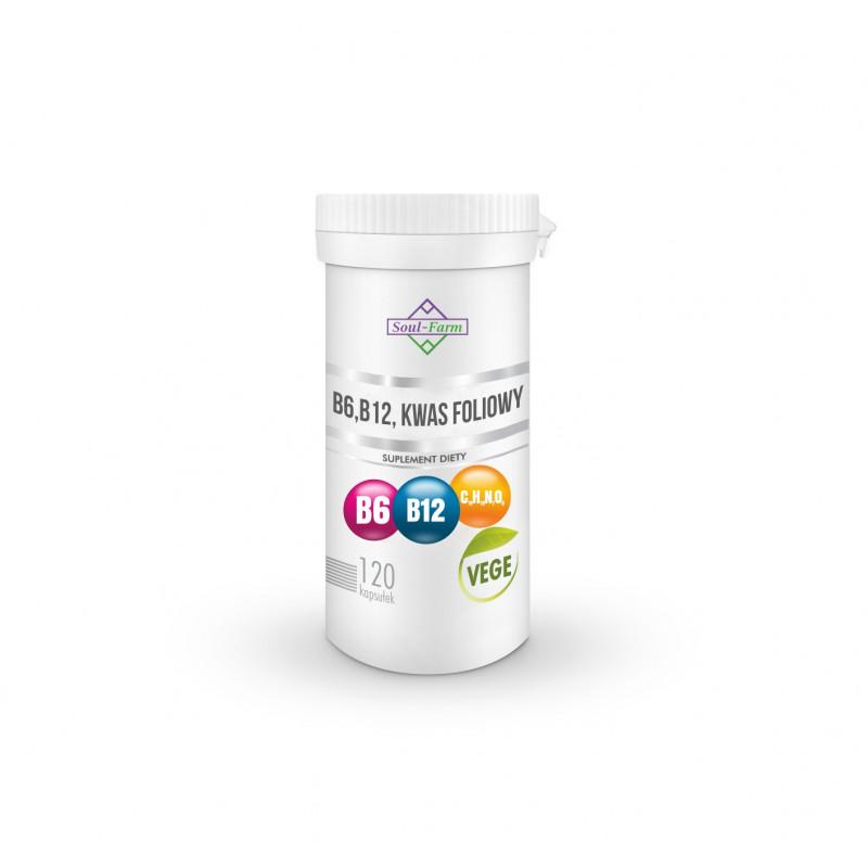 VITAMIN B6 (18 mg) + B12 (600 mcg) + FOLIC ACID (100 mcg) 120 CAPSULES